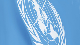 Flag of the United Nations Opens page: UN Convention on the Rights of Persons with Disabilities