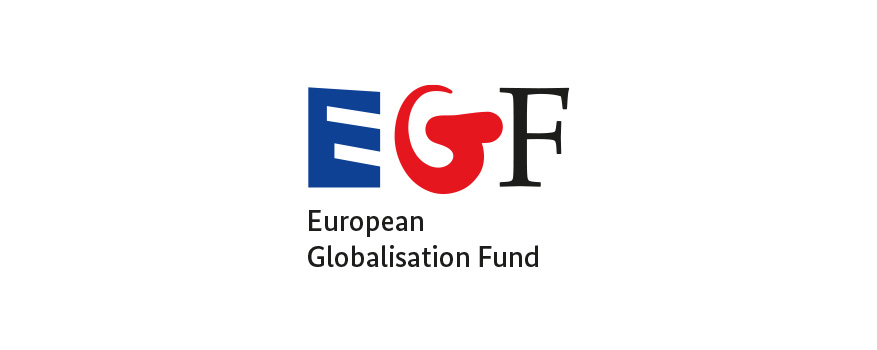 European Globalisation Fund